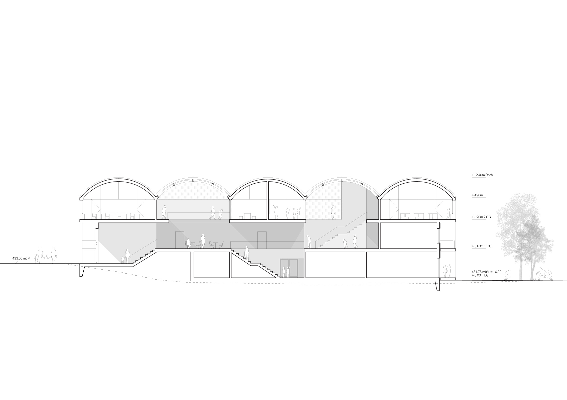 Cross section / spatial sequence